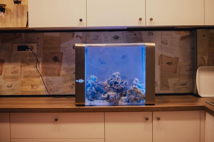 Iot Aquarium